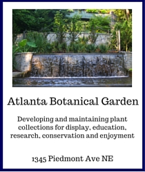 rita_cox_keller_williams_atlanta_botanical_garden